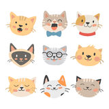 Cats heads vector illustration cute animal funny decorative characters feline domestic trendy pet drawn Royalty Free Stock Photo
