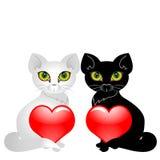 Cats and heats Stock Image