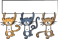 Cats holding blank card Stock Image
