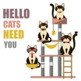 Cats House,Condo Flat Style. Vector Illustration Royalty Free Stock Photos