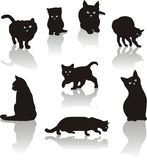 Cats icon set Stock Image