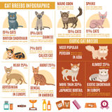 Cats infographics set Royalty Free Stock Photo