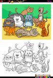 Cats and kittens characters group color book. Cartoon Illustration of Cats and Kittens Animal Characters Group Coloring Book Activity Stock Photo