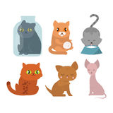 Cats kitty vector characters. Cats collection vector silhouette. Cute domestic cats different animals. Different cats young adorable tail symbol playful paw Stock Images