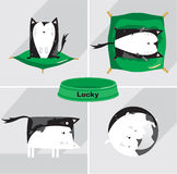 Cats life icons set. Icons set about cats life Stock Image