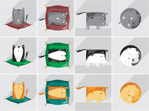 Cats life. Icons set about sleepy cat Stock Image