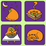 Cats Life. Some pictures from the life of the cat, vector illustration Stock Photography