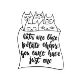 Cats are like potato chips, you can`t have just one - hand drawn dancing lettering. Quote isolated on the white background. Fun brush ink inscription for photo vector illustration