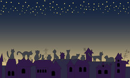 Cats look at the night sky Royalty Free Stock Image