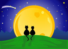Cats looking to the moon. Two cats in love, watching  the moon Royalty Free Stock Photos