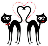 Cats in love Royalty Free Stock Images
