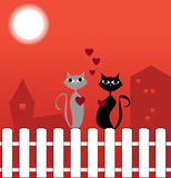 Cats in love. Male and female cat sitting on a fence Stock Photos