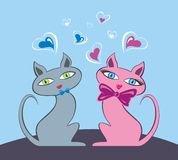 Cats in Love Stock Photo