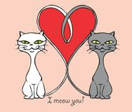 Cats in love : I meow you. Drawing of two cute cats, tales forming a heart. Vector available Stock Photo