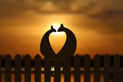 Cats in love silhouette on the fence in sunset. EPS vector illustration. Stock Photos