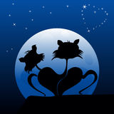 Cats in love. Two cats at view of night starry sky Stock Image