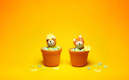 Cats model in flowerpot. Dolls Cat model in flowerpot on Yellow Background stock images