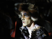 CATS Musical Royalty Free Stock Image