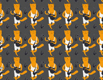Cats musicians pattern. Cartoon style. Cats musicians seamless flat pattern Royalty Free Stock Images