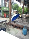 Cats need love too!. Cat sheltering under umbrella during rain storm on Gili Air, Indonesia Stock Photo