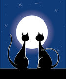 Cats at night. Vector Cats at night in front of moon Stock Illustration
