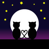 Cats in the night. Cat in love at night with moon. Vector Illustration Royalty Free Stock Images