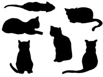 Cats outline Royalty Free Stock Photos