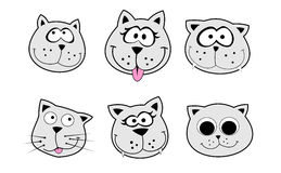 Cats pack. Very big size six cats heads pack illustration Royalty Free Stock Image