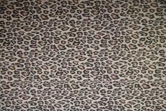 Cats pattern Stock Image