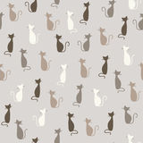 Cats pattern Stock Photography