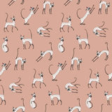 Cats pattern. Cute cornish rex cats on pink background. Seamless pattern for your design Royalty Free Stock Photography