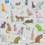 Cats pattern Royalty Free Stock Photo