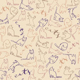 Cats pattern with text Royalty Free Stock Images
