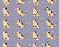 Cats pattern Stock Images