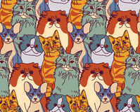 Cats pets animal group color seamless pattern Royalty Free Stock Photo