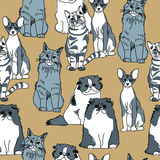 Cats pets animal group gray seamless pattern Stock Photography