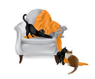 Cats playing on chair-white background Royalty Free Stock Images