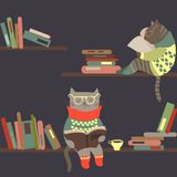 Cats reading books on bookshelves royalty free stock photo