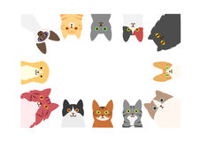 Cats rectangle frame Stock Images