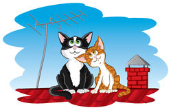 Cats on the roof Stock Image