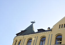 Cats on the Roof Building from Riga in Latvia Royalty Free Stock Images