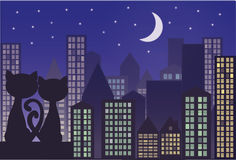Cats on the roof of the city. Cats on the roof of the night city Stock Photography