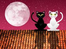 Cats on roof Royalty Free Stock Photos