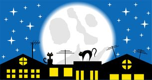 Cats on the Roof at Night Vector Stock Image