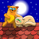 Cats on roof. Red and white cats cuddling at night on a tiled roof. Cats are sitting on the background of the starry sky above their heads full moon shines Royalty Free Stock Photos