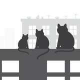 Cats on the roof. Cats sitting on roof and looking to sity, vector illustration Royalty Free Stock Photo