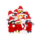 Cats with Santa Hat Bouquet Present. Vector Illustration. isolated on White Background. Cats with Santa Hat Bouquet Present. Vector Illustration. isolated on Stock Photos
