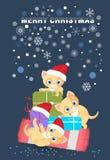 Cats in Santa hat ,joy on Christmas. Stock Image