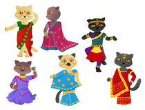 Cats in a sari Royalty Free Stock Image