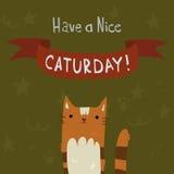 Cats Saturday Postcard. Stock Photos